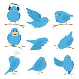 Blue birds set Royalty Free Stock Photo