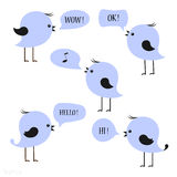 Blue birds with speech bubbles Stock Photography