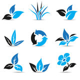 Blue and Black Leaves  on white Royalty Free Stock Photos
