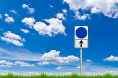 Blue blank sign on fresh spring green grass