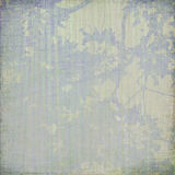 Blue blossom cream textured background frame Royalty Free Stock Images