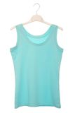 Blue blouse Stock Photos