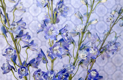 Blue on Blue. Small blue flowers on blue background Stock Images