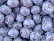 Blue Blueberries-Horizontal. A high resolution horizontal macro of freshly washed bluberries. (12MP camera Royalty Free Stock Photography