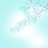 Blue   blur abstract background Stock Photos