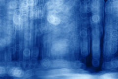 Blue blurred background forest Stock Image