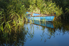 Blue  boat on lake. Stock Images