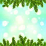Blue bokeh light effect with fir tree branches. Frame vector Christmas background Royalty Free Stock Images