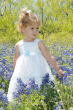 Blue Bonnet Baby Royalty Free Stock Image