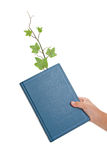 Blue book and Sprout Stock Photos