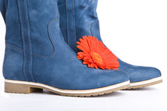 Blue boot and  red flowers Stock Images