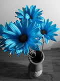 Blue bouquet Royalty Free Stock Photos