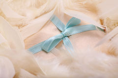 Blue bow Stock Photos