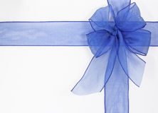 Blue bow. On a white background Stock Images