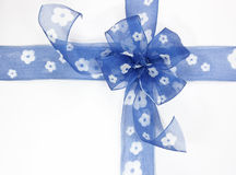 Blue bow. On a white background Stock Photography
