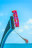 Blue bow of Maldivian dhoni boat. With red flowers and blue sky Stock Photo
