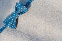 Blue bow tie royalty free stock images