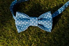 Blue bow tie stock images