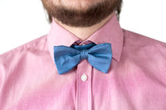 Blue bow-tie with pink shirt. Stock Image