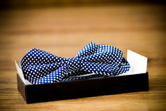 Blue bow tie. With white dots placed in the holder Stock Photo