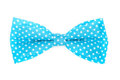 Blue bow tie with white polka Royalty Free Stock Photo