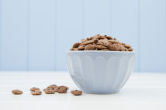 A blue bowl with cereals in the form of chocolate cookies Stock Photos