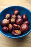 Blue bowl with chestnuts on wood Royalty Free Stock Image