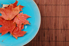 Blue bowl with leaves Stock Photo