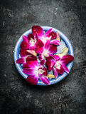 Blue bowl with water and pink orchid on dark rustic background Stock Photography