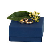Blue box with wedding rings. Blue box with wedding rings on white background Stock Photo
