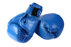 Blue boxing-gloves. On the white background. (isolated stock image