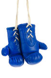 Blue boxing gloves. Pair of hanging blue boxing gloves isolated over white Royalty Free Stock Photos