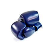 Blue boxing gloves 1 Stock Image