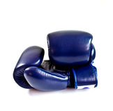 Blue boxing gloves 2 Royalty Free Stock Image