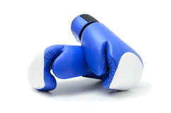 Blue boxing gloves. On white background Stock Images