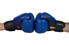 Blue boxing gloves. On a white background. isolated Stock Image