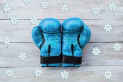 Blue boxing gloves on a white background. Ntemplate for creative projects Royalty Free Stock Photography