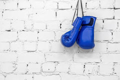 Blue Boxing Gloves. On the white brick background Royalty Free Stock Photo