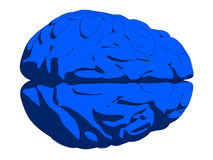 Blue brain Royalty Free Stock Image