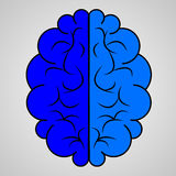 Blue brain icon Royalty Free Stock Photography