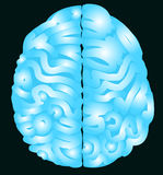 Blue brain with nerve vector Stock Image