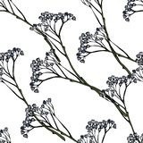 Blue branches flowers bells on a white background illustration. Seamless pattern royalty free illustration