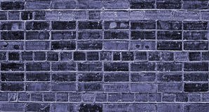 Blue brick wall. Brick wall of newly built house, background, texture, blue Stock Images
