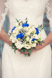 Blue bridal bouquet in the hands of. Blue  bridal bouquet whith cotton in her hands Royalty Free Stock Images