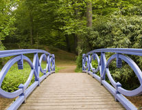 The blue bridge. Blue bridge in front of forest Stock Image