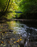 Blue Bridge - Skelton Beck - Autumn - Cleveland Way Royalty Free Stock Photo