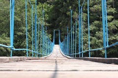 Blue bridge. Blue wooden bridge in the forest Royalty Free Stock Images
