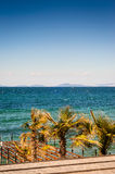 Blue Bright Sea View With Islands And Palm Trees Stock Images