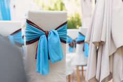 Blue and Brown Bow Stock Photography
