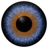 Blue and brown 3d eyeball texture with black fringe. And white background stock photography